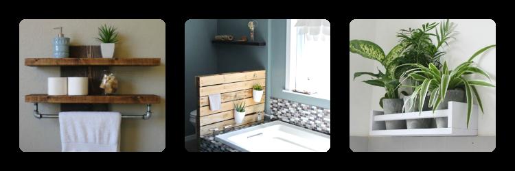 plante dans salle de bain best plante pour salle de bain sombre la plante verte d int rieur. Black Bedroom Furniture Sets. Home Design Ideas
