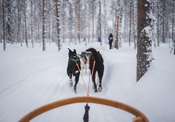 activité-loisir-ski