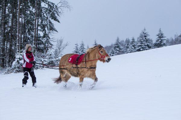 ski-joering-montagne