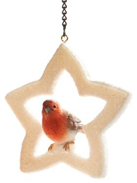 etoile-lumineuse-oiseau-deco-noel