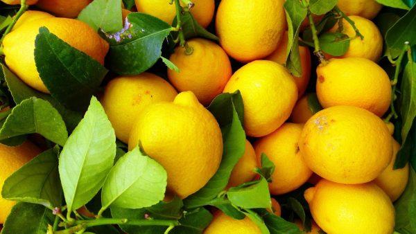 geste-healthy-jus-de-citron
